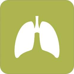 Αναπνευστικά Είδη Υψηλής Ποιότητας